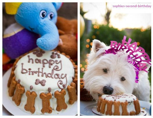 The 73 best WESTIE CAKES COOKIES images on Pinterest ... Doge Birthday 21