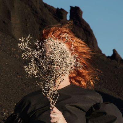 Silver Eye Goldfrapp