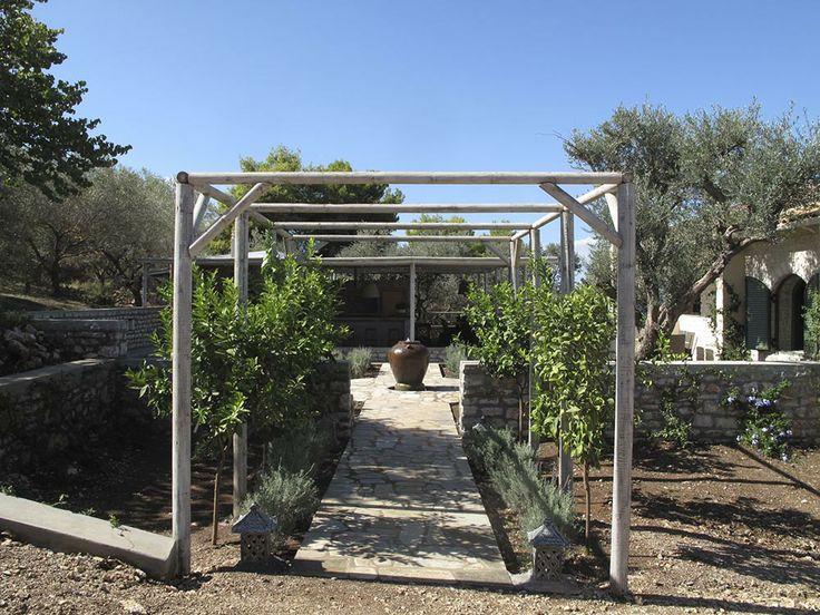 Courtyard entrance with lemon-tree pergola