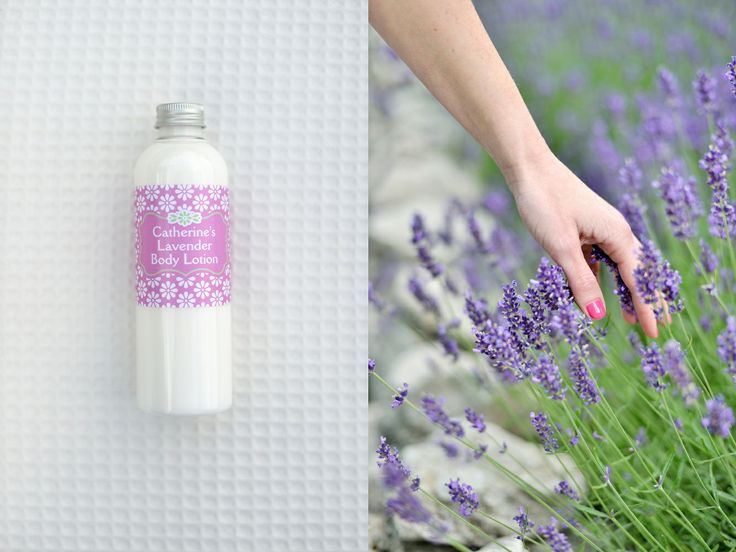Catherine's Lavender Body Lotion from Catherine's Vineyard Cottages in Csákberény, Hungary