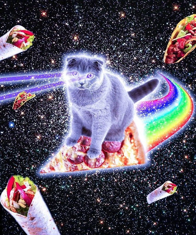 5e5379862f Laser Eyes Space Cat Riding Rainbow Pizza   Poster   Space Cats ...