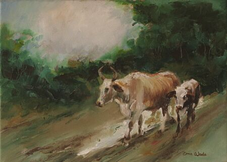 Rural Road (Nguni 54) (Not Available)