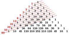 Sucesión de Fibonacci - Wikipedia, la enciclopedia libre
