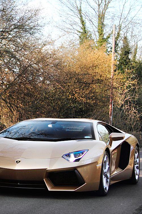 Lamborghini Aventador Gold..  want more? visit - http://themotolovers.com