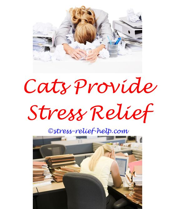 dog and stress relief - aws 5.2 stress relief.affirmations stress relief stress relief vitamins supplements ivf stress relief 7663468953