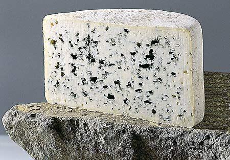 Сыр с плесенью   история   теория
