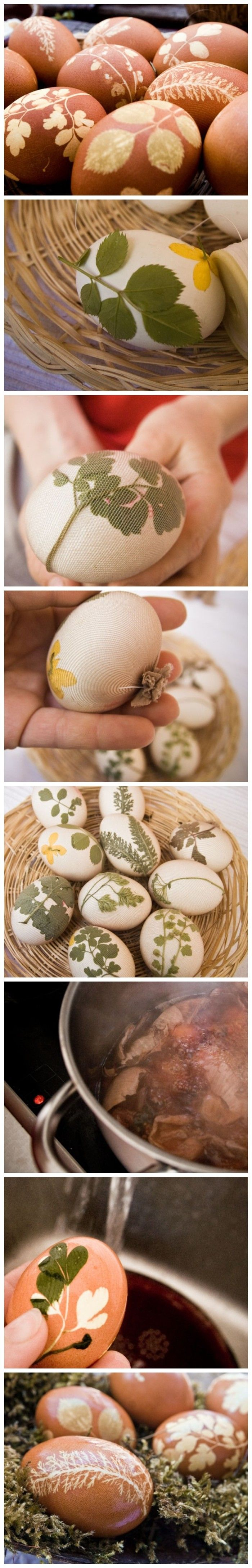 Do you want to make the best Easter eggs ever ? Just color them with onion & cabbage dye and use herbs and flowers as stencils to create pretty designs.