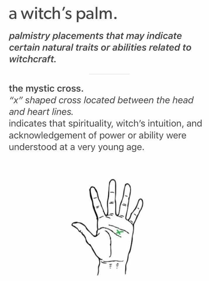 Palmistry- I have four on my right hand in this area? And two on my left. owo;;;