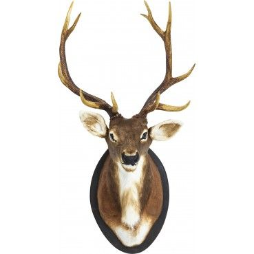Tête #Deer Fur #Kare #Design