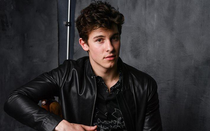 Descargar fondos de pantalla Shawn Mendes, 2017, chicos, la celebridad, el cantante canadiense