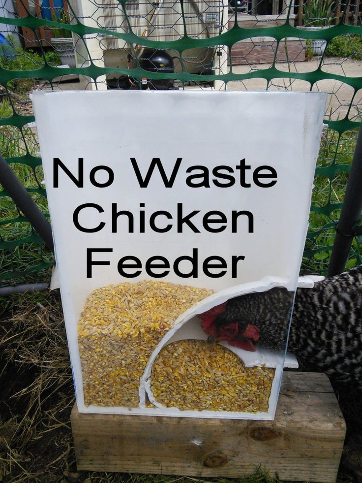 1-CF.... What is needed is a chicken feeder that has no mess, doesn't spill out over the ground, and doesn't clog up when the feed gets moist or wet! In fact, a feeder can be specifically used f…