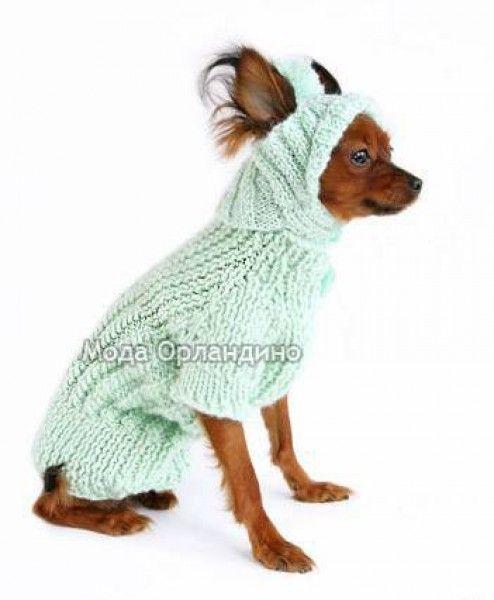 вязание для собак чихуахуа схемы и модели с описанием: 22 тыс изображений найдено в Яндекс.Картинках