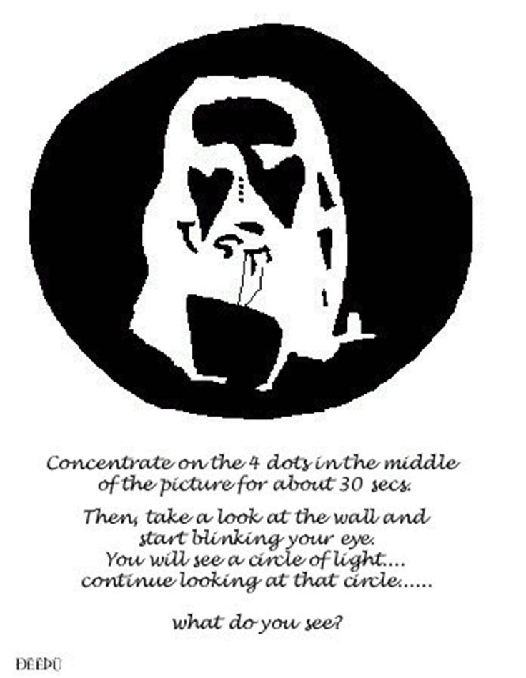 Best Perceptionillusions And Ambiguity Images On Pinterest - Fascinating optical illusion disguises 12 black dots right in front of you
