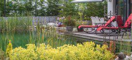 Atriumgarten - Gartendesigns - Niedermaier Gärten & Freiräume GmbH, Purfing/Vaterstetten bei München