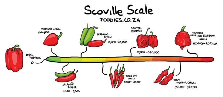 Foodies | People who love food | South Africa | How Hot Is Too Hot When It Comes To Chillies?