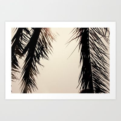 Palm Tree dreams Art Print Promoters - $17.00