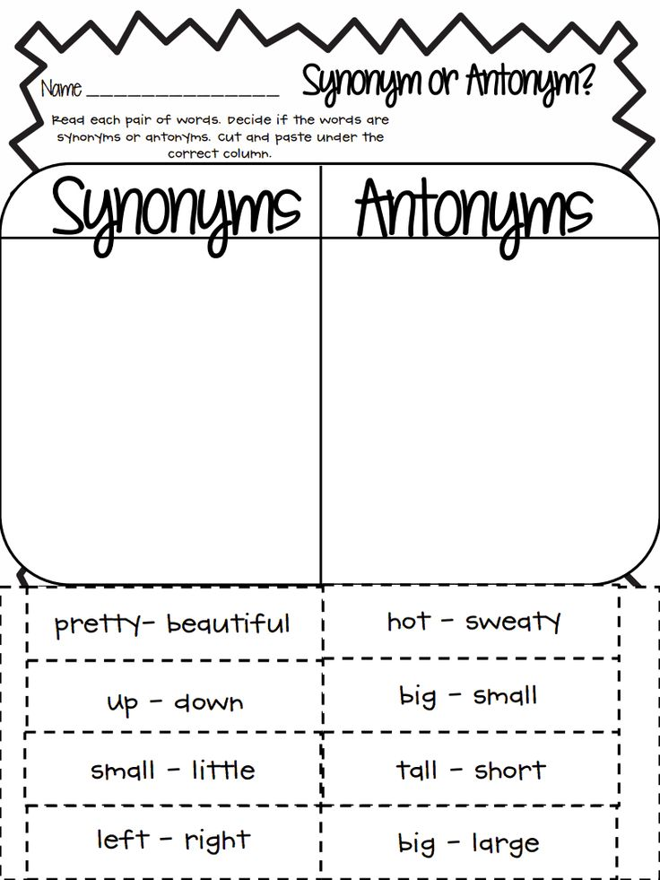 Synonym Or Antonym