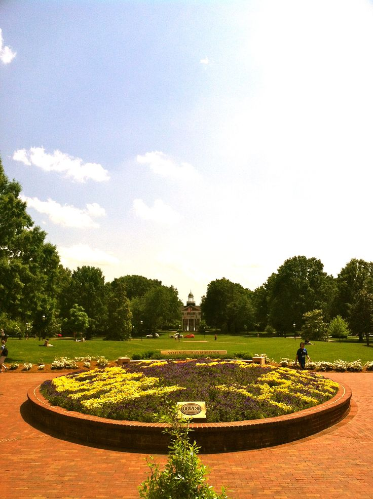 Every freshmen steps onto this campus nervous and excited of to expect throughout their time at Elon University.