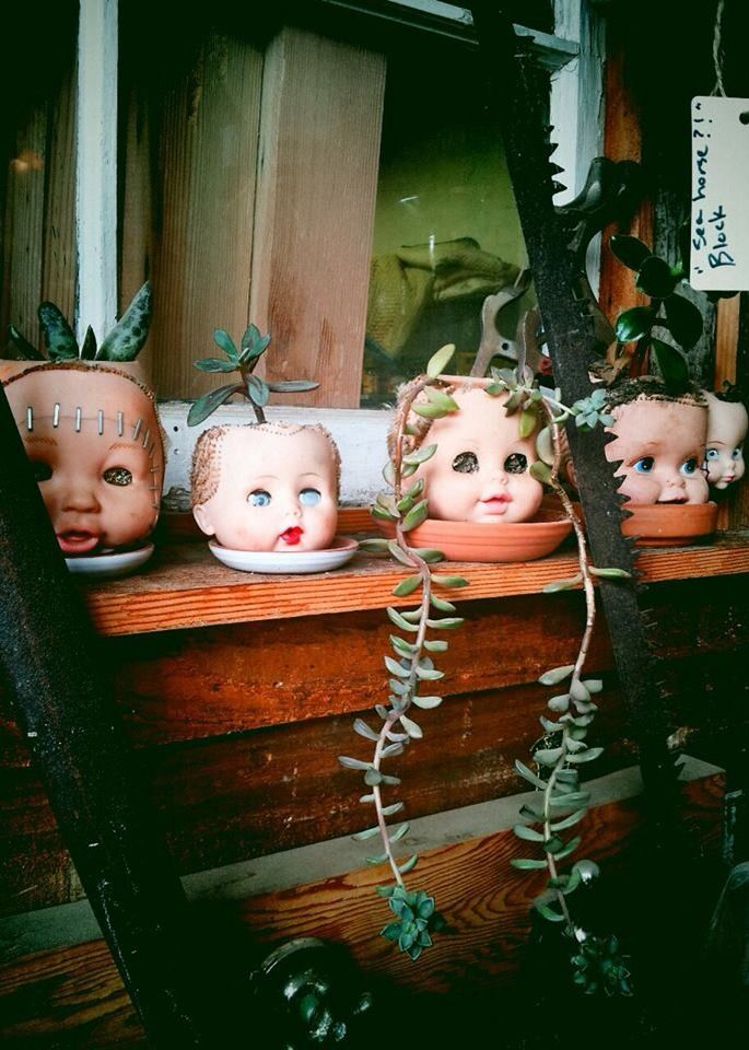 Doll Head Planters. Freaky and awesome. Plants in a doll head says that this has been here a while...