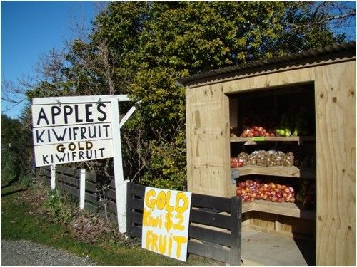 New Zealand, Nelson, Motueka, near the Abel Tasman.  There are fruit and veggie stalls like this all over rural NZ.