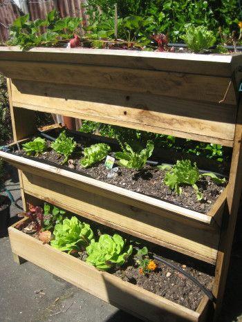 Best 25+ Vegetable Planters Ideas On Pinterest   Vegetable Garden Planters, Vegetable  Planter Boxes And Backyard Vegetable Gardens
