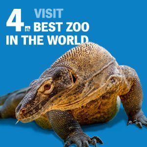 zoo in Prague enter fee 28$ for all