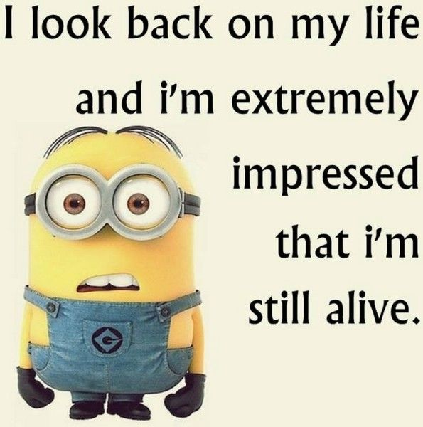 17 Best Ideas About Funny Minion On Pinterest: 17 Best Ideas About Minion Talk On Pinterest