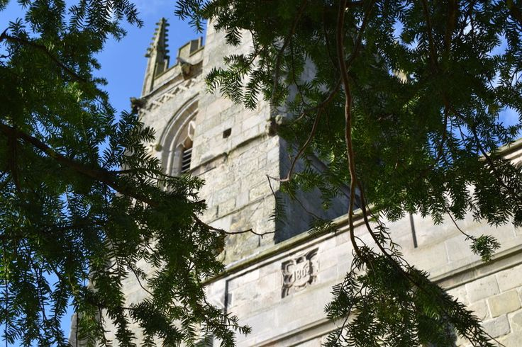 Taz returns to st Mary Magdalene's Church battlefield shropshire - april 2016