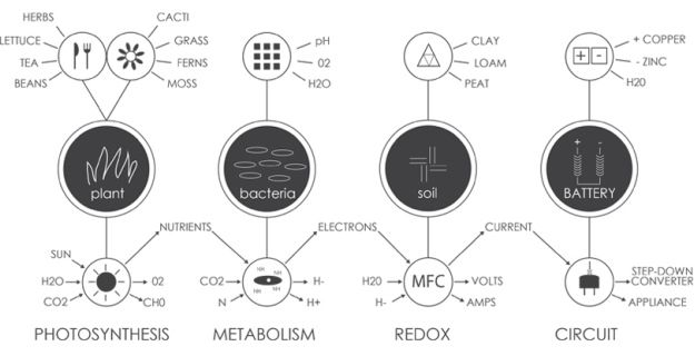 SELF-SUSTAINING SOLAR PANEL CREATES ENERGY FROM BACTERIA IN DIRT