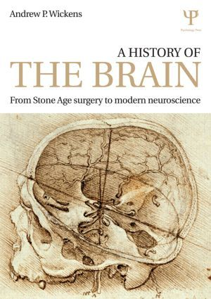 A History of the Brain: From Stone Age surgery to modern neuroscience (Paperback) - Routledge