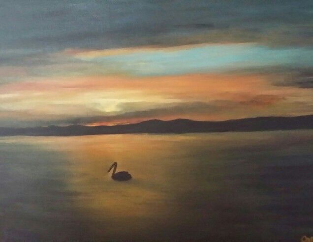 Pelican Sunset by Caro