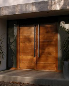 Modern double entry front doors - Google Search
