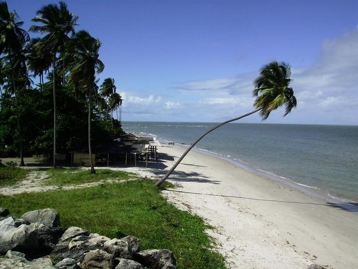 Pernambuco recebe agentes do Cadastur. Até o final do ano, 25 municípios serão visitados e mais de 600 empreendimentos, registrados no sistema de cadastro do Ministério do Turismo. Leia mais: