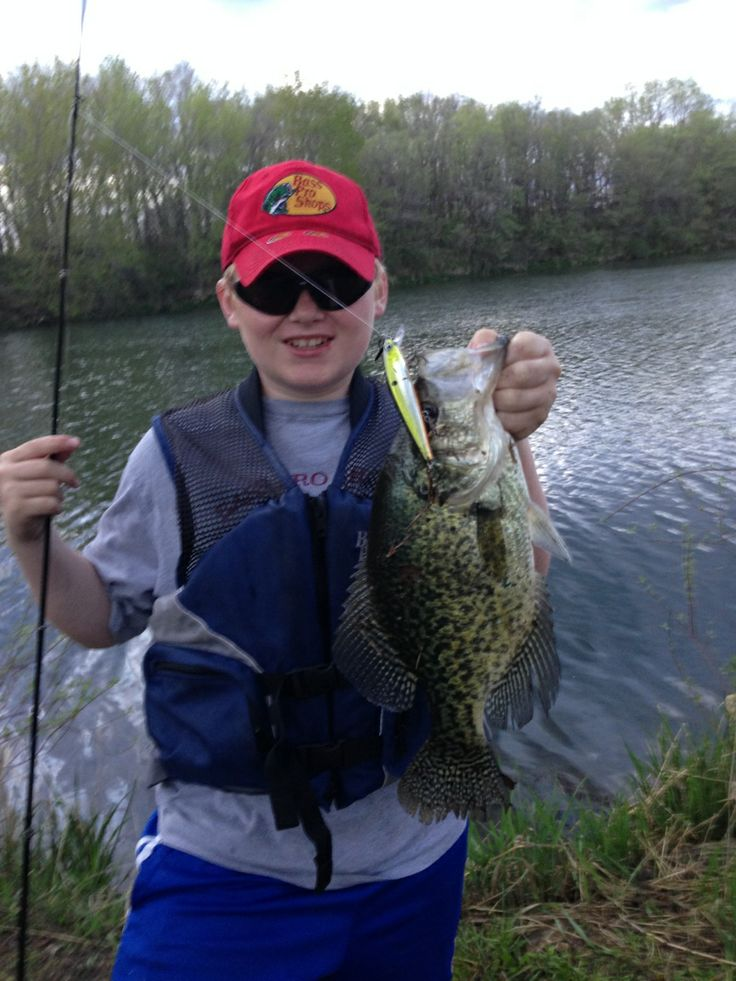 Master Angler worthy black crappie caught by Sam Louw in Story County. 3 pounds, 20 inches.