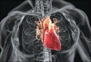 Phosphates link to heart disease