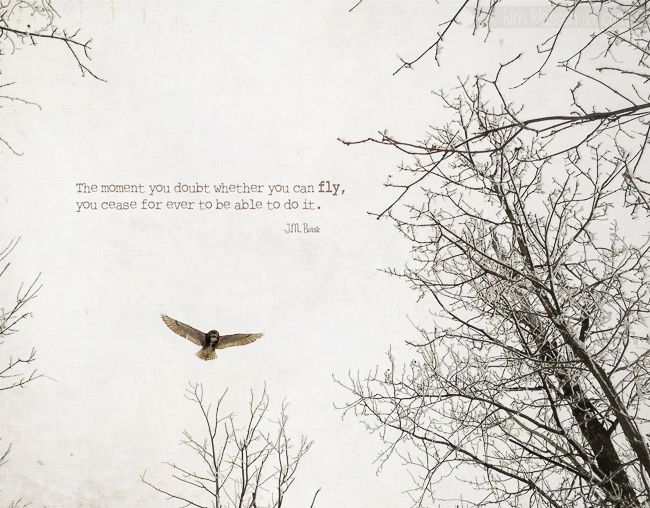 The moment you doubt whether you can fly, you cease for ever to be able to do it. -J.M. Barrie