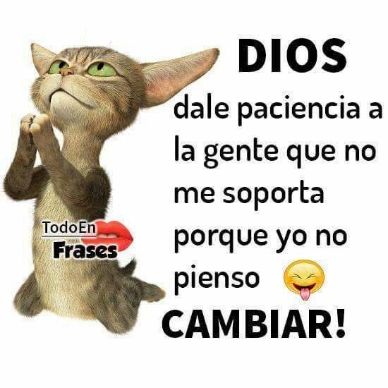Dios dame paciencia