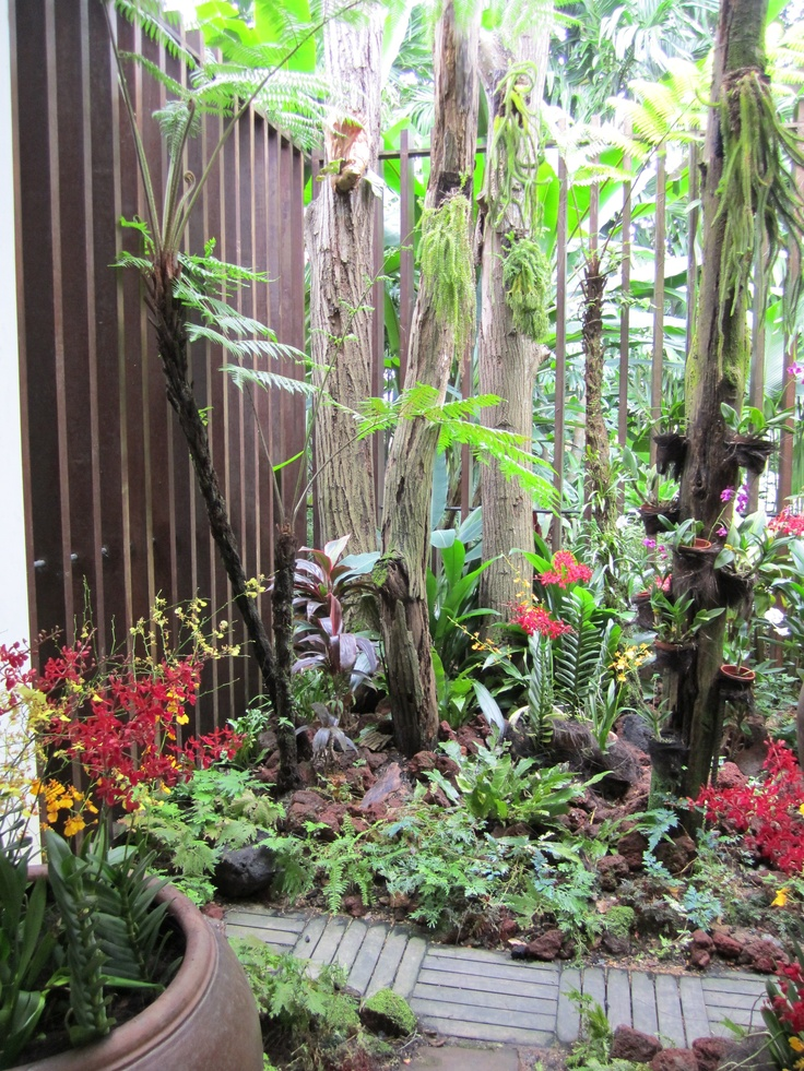 Outdoor Orchid Garden At Hortpark Visitor Gallery In Singapore Fact The Vanda