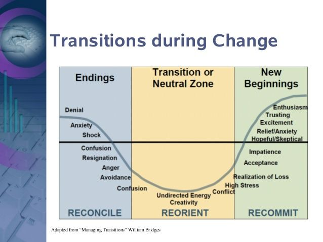 psychology and transitions Professional change and transition: a wide range of disciplines such as psychology, sociology, business and social policy (iles and sutherland, 2000.