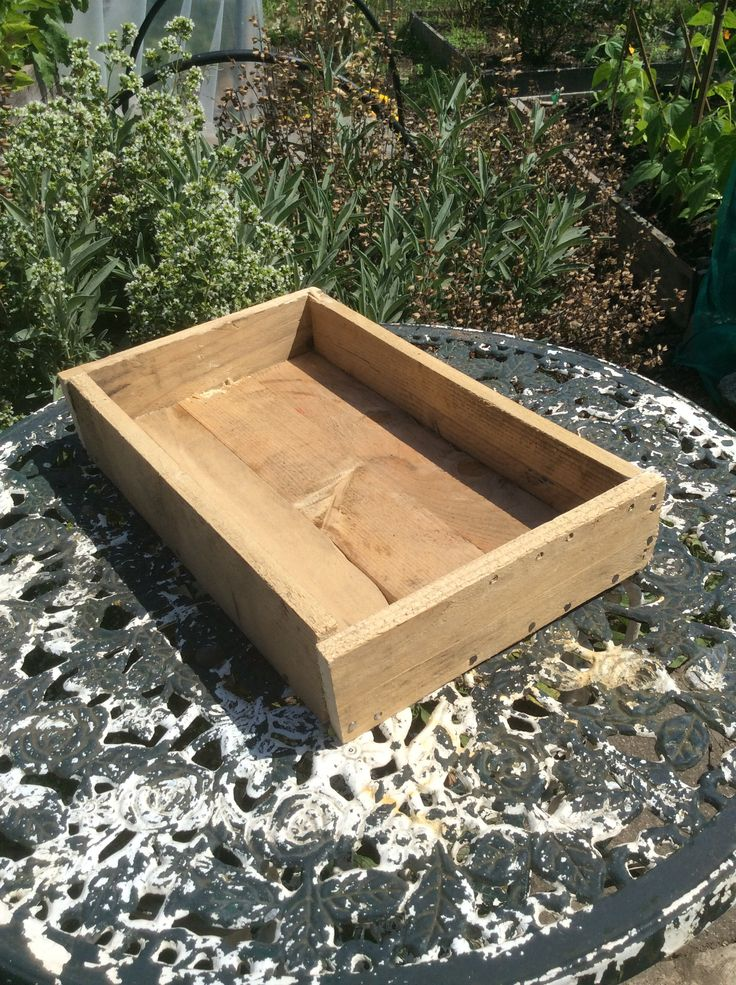 1000 images about pallet seed trays on pinterest dress for Tray garden designs
