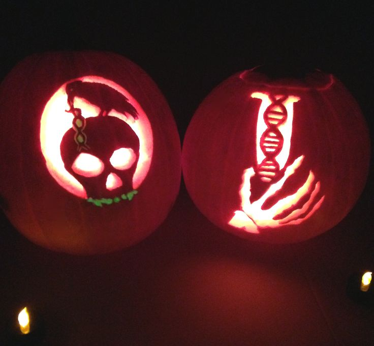 Pumpkin Carving Ideas Science: Our Epigenetics-inspired Pumpkin Carvings Are On Display