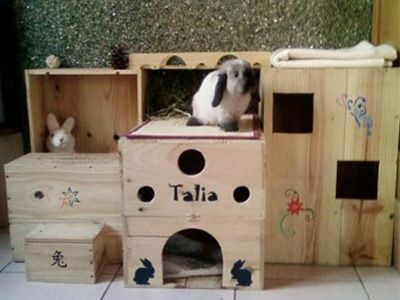 Great DIY play space for buns.