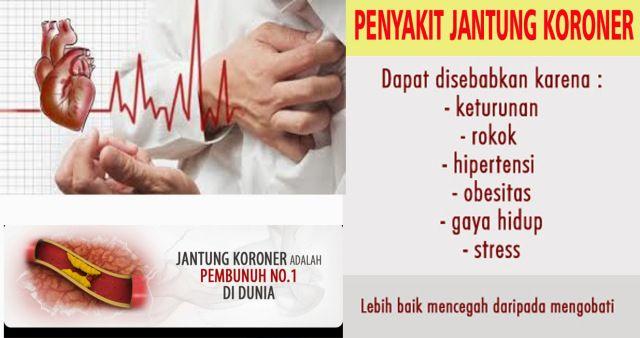 Saat ini di Negara Indonesia sedang mengalami peningkatan paling cepat dibanding negara asia lainnya dalam kasus Penyakit Jantung. Sungguh miris mendengarnya memang tetapi ini tidak bisa disalahkan karena terbatasnya pengetahuan seseorang tentang penyakit ini. Banyak informasi yang salah tentang penyakit jantung, banyak yang bilang bahwa penyakit jantung disebabkan oleh kolesterol padahal penyakit jantung disebabkan banyak faktor, Contohnya Stres, Lemak trans dan Kurang protein dan lemak…