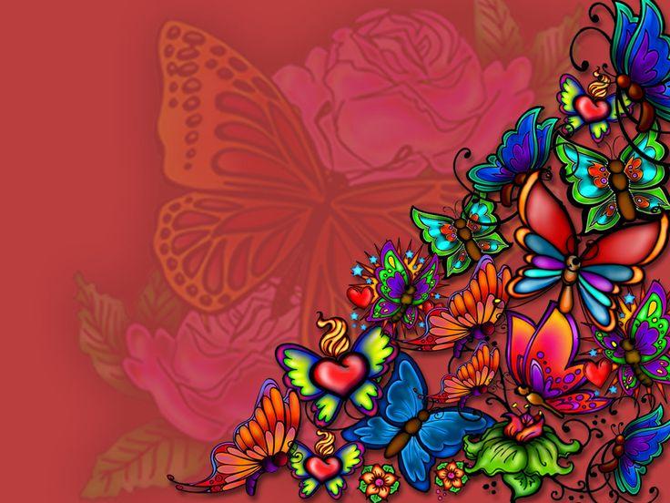 High Definition butterfly wallpaper for free download