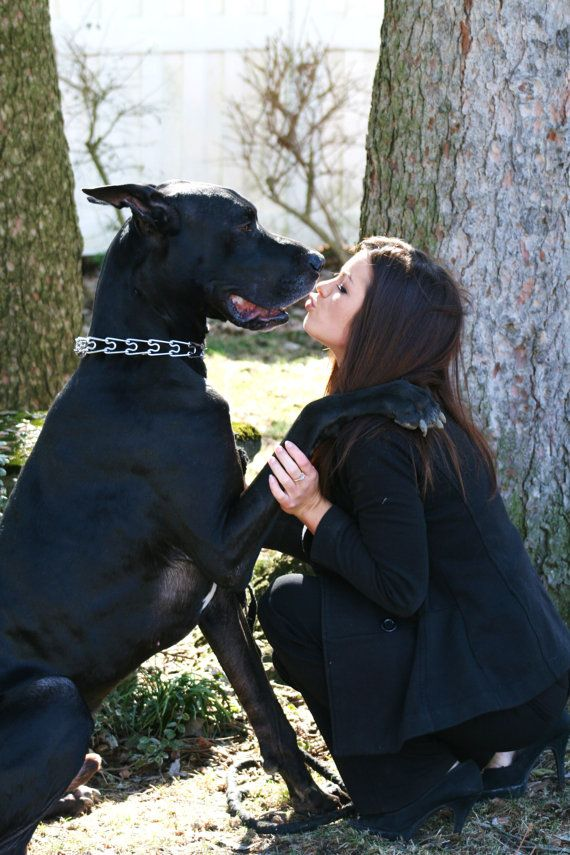 (My mother took this one of me & my great dane Titan)Uncondition Love....Thats what we have :)