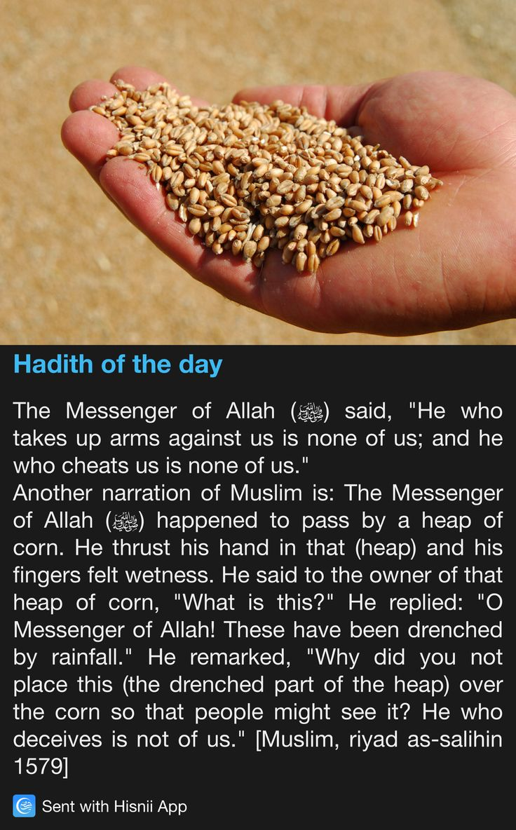 Hadith of the day Water made the corn heavier                                                                                                                                                                                 More
