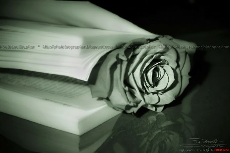 Book and soul...  by PhotoLeoGrapher