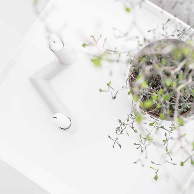 Świecznik pipelline gray @nur_design oraz corokia cotoneaster - idealne połączenie ?