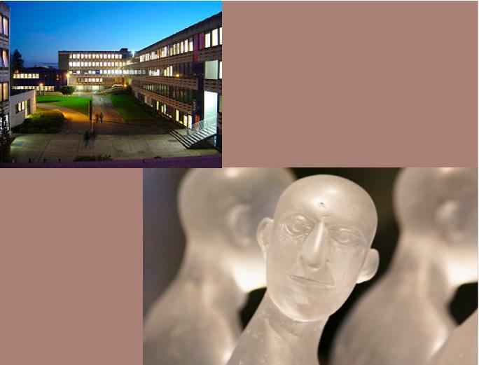Ter landschapsafwisseling heb ik m'n minor in Frankrijk gedaan. Ik koos voor sociale psychologie en vertalen @ Université de Rennes 2 (2008-2009).