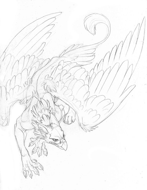 griffin tattoo, would be sweet incorporated into a sleeve
